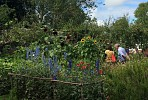 The Beeches Barcombe National Garden Scheme Opening
