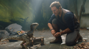Jurassic World Fallen Kingdom 12A