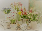 Scented Spring Flower Workshop