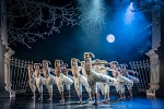 Matthew Bournes Swan Lake no rating